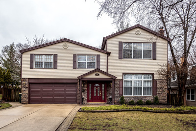 Arlington Heights Single Family Home For Sale: 1007 West Noyes Street