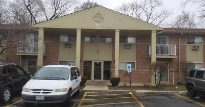 Hanover Park Condo/Townhouse New: 6613 Scott Lane #4