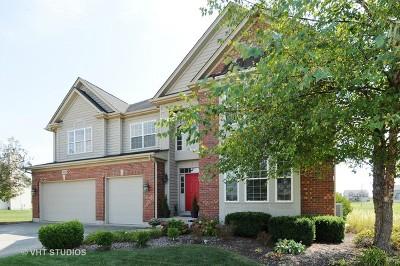 Plainfield Single Family Home New: 25123 West Zoumar Drive