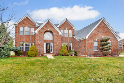 Naperville Single Family Home For Sale: 2603 Champion Road