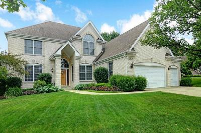 Downers Grove Single Family Home For Sale: 19w135 Mallard Court