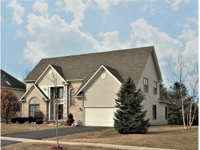 North Aurora Single Family Home For Sale: 458 Mallard Point Drive