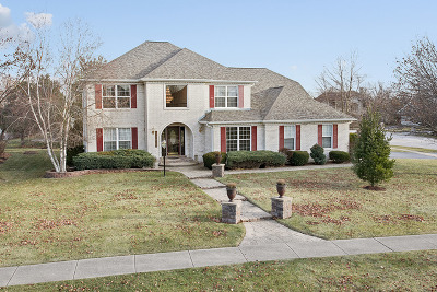 Plainfield Single Family Home New: 13613 Golden Meadow Drive