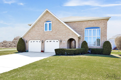 Des Plaines IL Single Family Home Re-Activated: $620,000