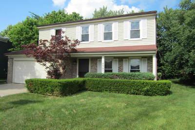 Hoffman Estates Single Family Home New: 4997 Somerton Drive