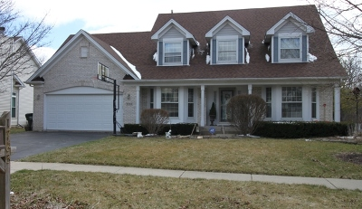 Hoffman Estates Single Family Home New: 1765 Nicholson Drive