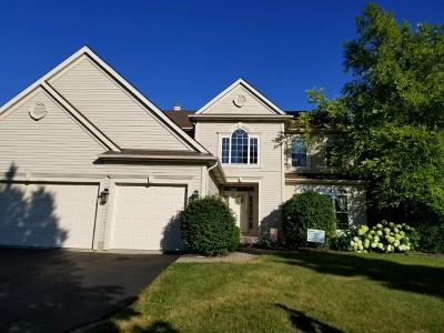 Bartlett IL Single Family Home New: $409,900