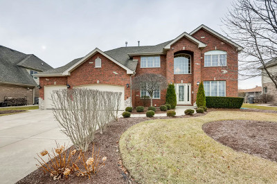 Orland Park Single Family Home For Sale: 13808 Legend Trail Lane