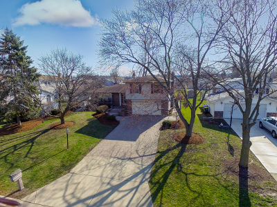 Carol Stream Single Family Home New: 473 Eagle View Drive
