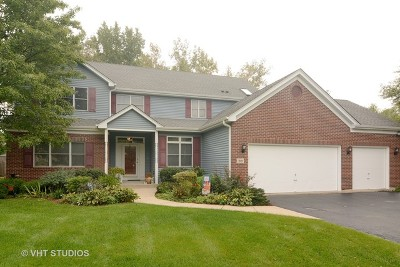 Palatine Single Family Home New: 319 North Pondview Drive