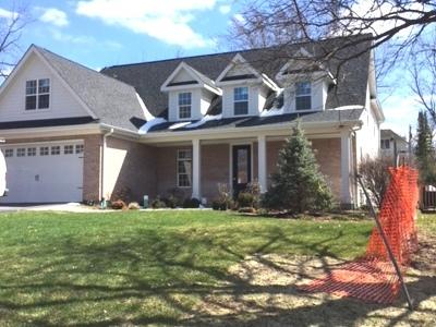 Barrington  Single Family Home New: 141 Sturtz Street