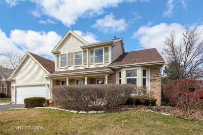 Buffalo Grove Single Family Home For Sale: 106 Copperwood Drive