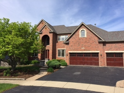 Plainfield Single Family Home New: 12812 Scoter Court