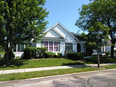 Plainfield Single Family Home For Sale: 13635 South Redbud Drive