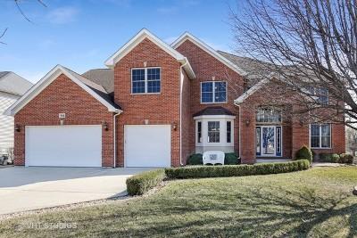 Dekalb Single Family Home For Sale: 356 Kingsbury Drive
