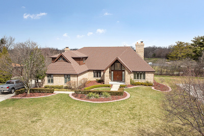 Olympia Fields Single Family Home For Sale: 3015 London Drive