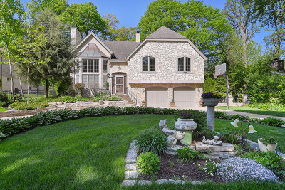 Hinsdale Single Family Home For Sale: 920 Oakwood Terrace