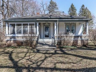 Elgin Single Family Home For Sale: 770 Hammond Avenue