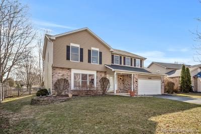 Naperville Single Family Home New: 1408 Baldwin Drive