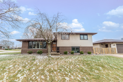 Tinley Park Single Family Home New: 6600 180th Street