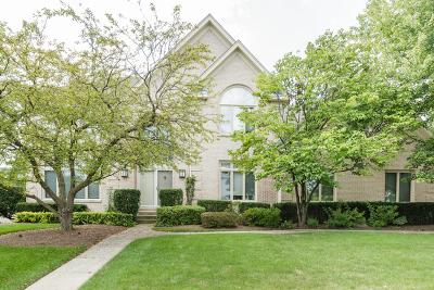 Buffalo Grove Single Family Home Price Change: 2980 Kingston Drive