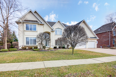 Orland Park Single Family Home For Sale: 10840 Somer Lane