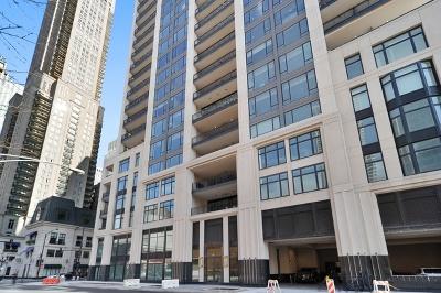 Chicago IL Condo/Townhouse New: $3,900,000