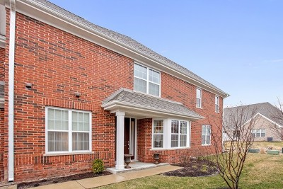 Northbrook Condo/Townhouse For Sale: 1154 Morgan Street