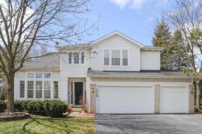 Buffalo Grove Single Family Home For Sale: 2530 Apple Hill Court