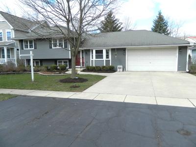 Warrenville Single Family Home For Sale: 3s540 Lorraine Avenue