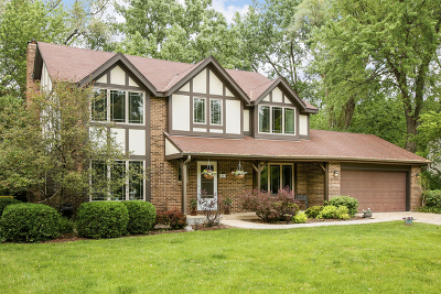 Wheaton Single Family Home New: 1765 Maple Lane