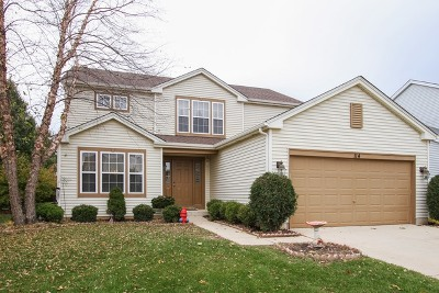Round Lake Single Family Home For Sale: 114 South Springside Drive