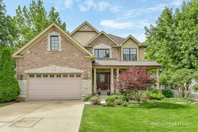 Wheaton Single Family Home For Sale: 906 East Illinois Street