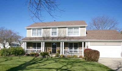 Libertyville Single Family Home For Sale: 220 Adler Drive