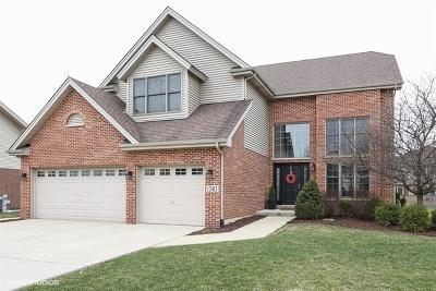 Homer Glen Single Family Home For Sale: 12413 Huntleigh Road
