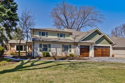 Mount Prospect Single Family Home New: 708 South See Gwun Avenue