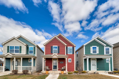 Elgin IL Single Family Home New: $250,000