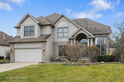 Plainfield Single Family Home New: 24969 Heritage Oaks Drive