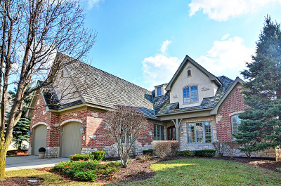 Oak Brook Single Family Home For Sale: 59 Forest Gate Circle