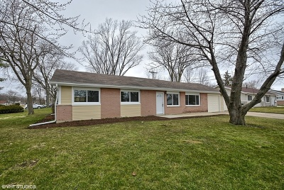 Hoffman Estates Single Family Home For Sale: 400 Lincoln Drive