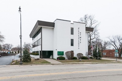 Lombard Commercial For Sale: 845 South Main Street