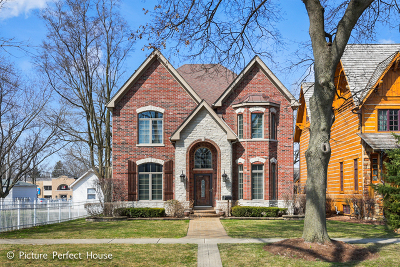 Naperville Single Family Home New: 517 North Center Street