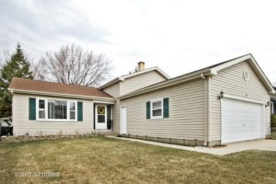 Streamwood Single Family Home New: 6 Windgate Court