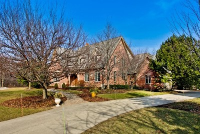 Libertyville Single Family Home For Sale: 14572 North Somerset Circle