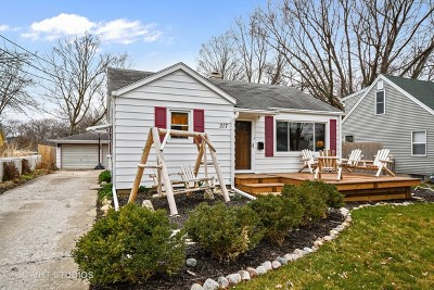 Batavia Single Family Home For Sale: 317 Hamlet Street