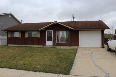 Romeoville Single Family Home For Sale: 429 Arnold Avenue