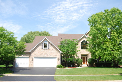 Naperville Single Family Home New: 4352 Camelot Circle