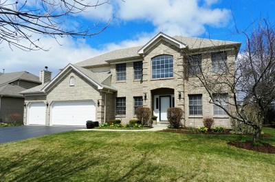 Naperville IL Single Family Home New: $509,850