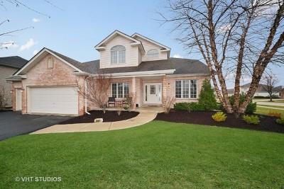 Plainfield Single Family Home New: 24611 Tufton Street