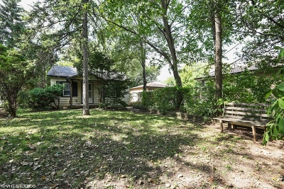 Downers Grove Single Family Home For Sale: 4734 Stonewall Avenue